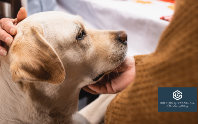 3 Reasons You Should Consider Incorporating A Pet Trust Into Your Estate Plan